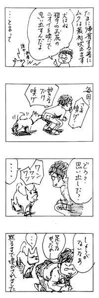 ムクの話(5/7)…弟との関係 - 花毛ブログ