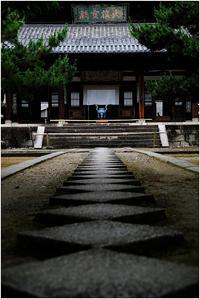 本堂へのアプローチ - HIGEMASA's Moody Photo