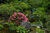 初夏の花咲く実光院 - 花景色-K.W.C. PhotoBlog