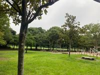 公園でお散歩♪ - 自然と遊楽