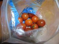 トマトまた貰いました - さかえのファミリー