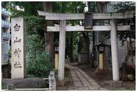 荻窪白山神社・猫神社 -  one's  heart