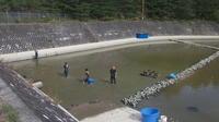 小西養鯉場&小西米プロジェクトTheOdyssey2020-55鯉の里は米の郷 - 鯉の里は、米の郷