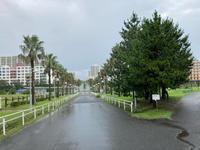 通り雨。 - 浦安フォト日記