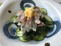 鯵の酢の物&スルメイカ三昧 - やせっぽちソプラノのキッチン2