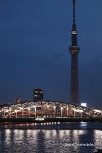 夜空に浮かぶ東京スカイツリーに夢を・・⁈ - 一場の写真 / 足立区リフォーム館・頑張る会社ブログ