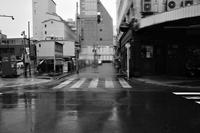 雨の日だった20200715 - Yoshi-A の写真の楽しみ