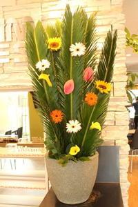 エニタイムフィットネスセンター赤羽北店様へアンリ・ルソー - 北赤羽花屋ソレイユの日々の花