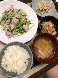 豚肉と豆苗の炒め物 - 庶民のショボい食卓