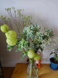 激安のファーマーズマーケットのお花はお手軽で部屋に花のある生活を実現できます - 50代主婦、わくわく生活始めました。 ~毎日ちょっぴり幸運が訪れる暮らし~