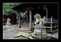 田舎の神社 - Desire