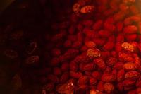 赤い花 - 日々の皿
