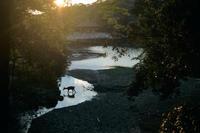 奈良 - IN MY LIFE Photograph