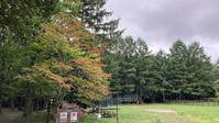 日々のコトの葉だより - 北軽井沢スウィートグラス