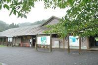 夏スルー? - 千葉県いすみ環境と文化のさとセンター