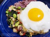 【ぎふベジ】菊菜香る♪ ~ 冷凍野菜と冷凍豆腐で春菊の薬膳ガパオ風ライス。(梅雨時の食養生解説付) - スパイスと薬膳と。