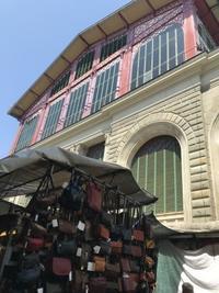 143日目、卒業できない市場の住民たち - フィレンツェのガイド なぎさの便り