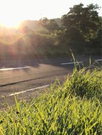 早朝散歩♪ - 笑う門には福来たる