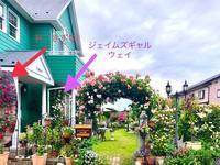 やっと晴れた〜♡やる事色々(^∇^)と薬剤散布♫ - 薪割りマコのバラの庭