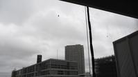 梅雨空のセミ - 絵を描きながら