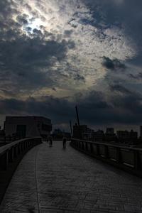 Bridge・・・隅田川・・・ - Photo & diary