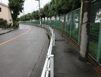 東久留米楊柳川(3)小金井街道~源流域まで - ひのきよ