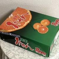 夏の蜜柑 - 秋田 蕗だより