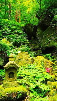閑さや岩にしみ入る蝉の声 - 風の香に誘われて 風景のふぉと缶