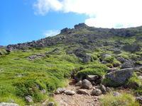 トムラウシ山2141m~中編2020.07.31 - ひだかの山に癒やされて
