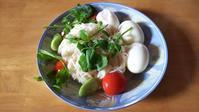 サラダ風の素麺 - 「 ボ ♪ ボ ♪ 僕らは釣れない中年団 ♪ 」Ver.1