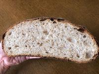 いつものカンパーニュ(過発酵) - slow life,bread life