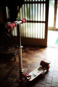 長岡花火 - ビール片手に