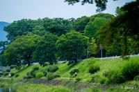 賀茂川 散歩 -9- - ◆Akira's Candid Photography