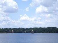 2020年7月 狭山湖 - 狭山丘陵の自然 ~ ベニヒワ♪の自然観察 ~