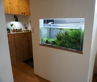 玄関の水槽取付けの画像が送られてきました。 - 暮らしと心地いい住まい