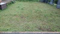 クラピア刈り3回目 - ウィズコロナのうちの庭の備忘録~Green's Garden~