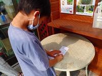インターンシップ県農生2020 - 手柄山温室植物園ブログ 『山の上から花だより』
