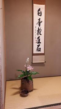 白雲 - 懐石椿亭(富山市)公式blog