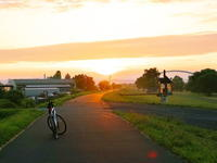 ホオアカ 2020/08/03 - 今朝の一枚 石狩川の朝