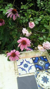 今朝の庭からソックスのつま先編んでいます - L'Écume des jours
