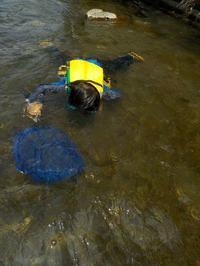 8月11日(火)夏休み特別プログラム1「おもいっきり川あそび!」 、12日(水)夏休み特別プログラム2「おもいっきり海あそび!」は、活動を実施いたします。 - 子どものための自然体験学校「アドベンチャーキッズスクール」