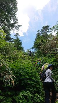 フリースマットと登山 三ツ石山 - ■ beigeの日々■