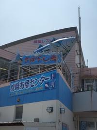 夏の海を見に行こう - おでかけメモランダム☆鹿児島