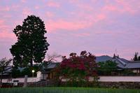 当麻寺周辺の散策石光寺・当麻寺 - 峰さんの山あるき