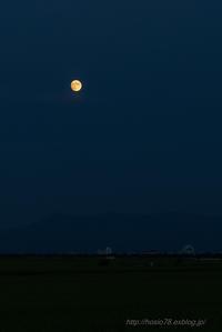 moonlight - デジタルで見ていた風景