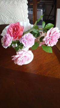 バラをカットしました靴下のかかと完成 - L'Écume des jours