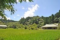 手塩にかけて育てる - 千葉県いすみ環境と文化のさとセンター