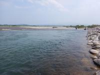 厳しい富山の神通川・庄川の状況 - 鮎毛鉤釣りの旅