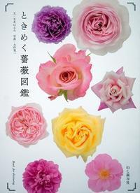 「ときめく薔薇図鑑」(山と渓谷社)台湾に続き中国での発行が決まりました。 - バラとハーブのある暮らし Salon de Roses