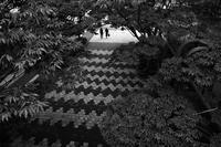 駅南で見た景色#0320200807 - Yoshi-A の写真の楽しみ